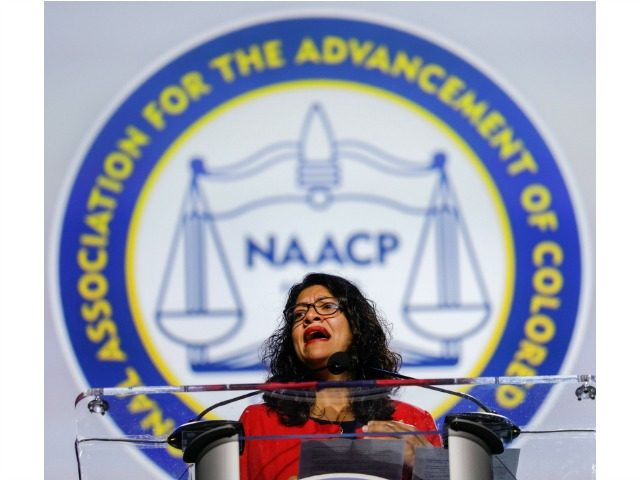 "DETROIT, MI - JULY 22: U.S. Rep. Rashida Tlaib (D-MI) speaks at the opening plenary session of the NAACP 110th National Convention at the COBO Center on July 22, 2019 in Detroit, Michigan. The convention is from July 20 to July 24 with the theme of, ""When We Fight, We …"