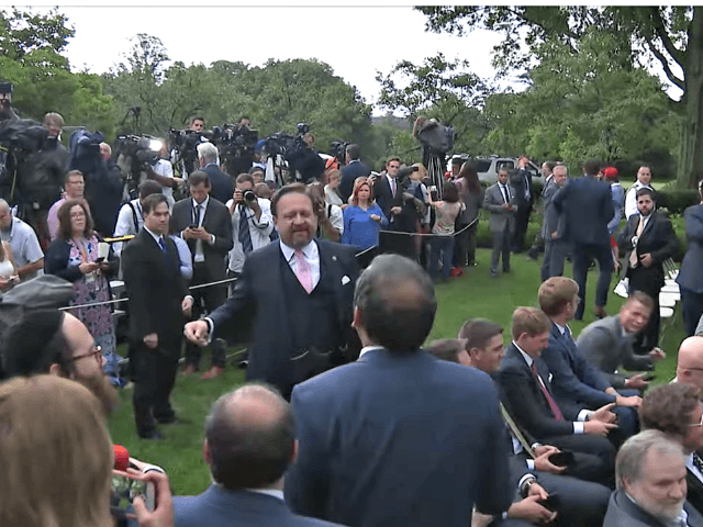 CNN reporter invites Gorka to take it outside at White House summit