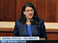 Tlaib: BDS Movement Against Israel Like Boycotting Nazi Germany