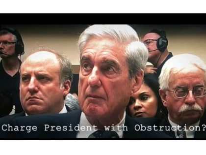 What Mueller Said