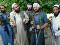 Taliban Ceasefire: 'We Will Stop Fighting' for Coronavirus