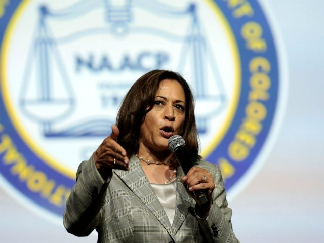 Democratic presidential hopeful Kamala Harris addresses the Presidential Forum at the NAACP's 110th National Convention at Cobo Center on July 24, 2019, in Detroit, Michigan. (Photo by JEFF KOWALSKY / AFP) (Photo credit should read JEFF KOWALSKY/AFP/Getty Images)