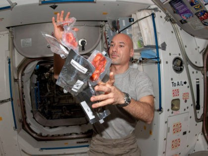 European Space Agency astronaut Luca Parmitano, Expedition 36 flight engineer, is pictured near food packages floating freely in the Unity node of the International Space Station.