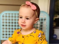 The family of a toddler who died after her grandfather allegedly dropped her from the window of a cruise ship Sunday are refusing to place blame on him.