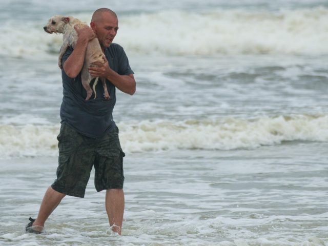 DAYTONA BEACH, FL - OCTOBER 6: Brian Johns, from Monroe, Michigan, carries his dog Buddy to the shore after the two of them played in the ocean along Daytona Beach, October 6, 2016 in Daytona Beach, Florida. With Hurricane Matthew approaching the Atlantic coast of the United States, the governors …