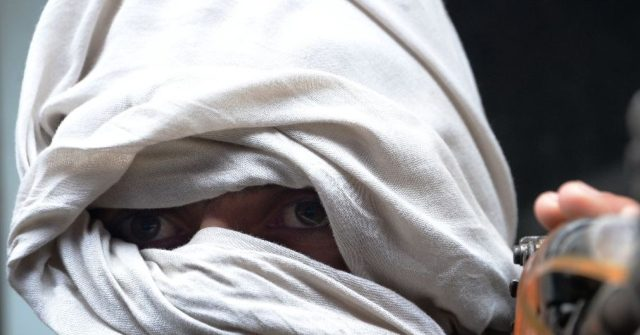 Afghan News Agency Finds Taliban Controls over Half of the Country