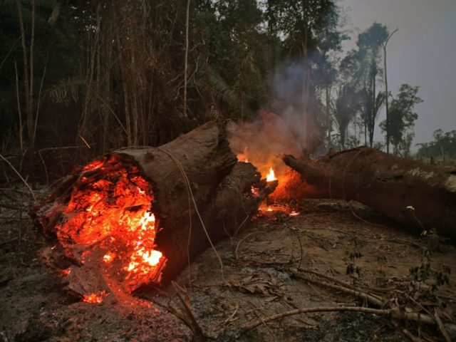 TOPSHOT - View of fire in the Amazon rainforest, near Abuna, Rondonia state, Brazil, on August 24, 2019. - President Jair Bolsonaro authorized Friday the deployment of Brazil's armed forces to help combat fires raging in the Amazon rainforest, as a growing global outcry over the blazes sparks protests and …