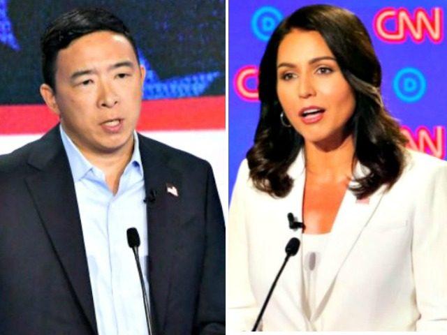 Andrew Yang, Tulsi Gabbard, Dem Debates