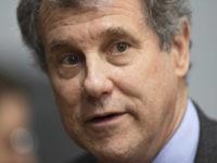 Brown (AP Photo/Julie Bennett)