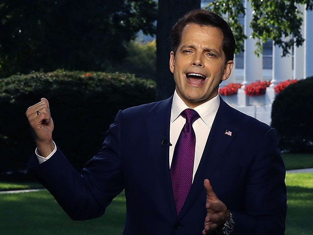 WASHINGTON, DC - JULY 26: White House Communications Director Anthony Scaramucci speaks on a morning television show, from the north lawn of the White House on July 26, 2017 in Washington, DC. (Photo by Mark Wilson/Getty Images)