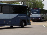 Greyhound buses bring a couple hundred Freedom Riders, their families and students to the Mississippi State Penitentiary in Parchman, Miss., Wednesday, May 25, 2011 as part of their Mississippi Delta civil rights tour. The event is one of several honoring the group of riders who headed south through civil rights …