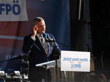 Austrian Freedom Party leader Norbert Hofer at a rally in Vienna during the 2019 European elections.