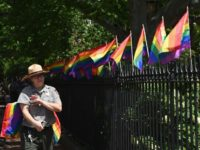 Pride flags on fence