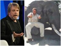 'Star Wars' Star Mark Hamill Suggests Boycotting All Jimmy John's