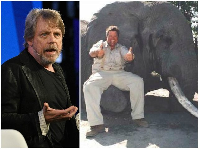 'Star Wars' Star Mark Hamill Suggests Boycotting 'All Jimmy John's Restaurants'