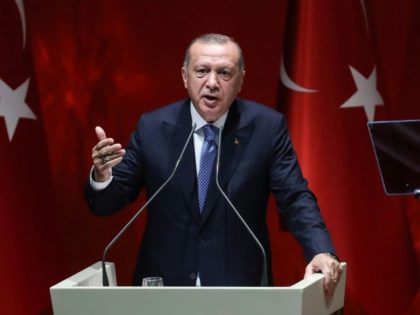 Rights groups have regularly criticised the erosion of free speech in Turkey under President Recep Tayyip Erdogan, pictured