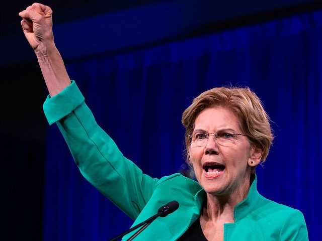 2020 US Democratic Presidential hopeful US Senator from Massachusetts Elizabeth Warren speaks on-stage during the Democratic National Committee's summer meeting in San Francisco, California on August 23, 2019. (Photo by JOSH EDELSON / AFP) (Photo credit should read JOSH EDELSON/AFP/Getty Images)