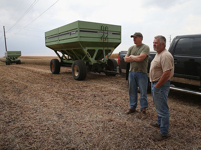 WORTHINGTON, MN - OCTOBER 02: Ron Porth (R) and his son John help to harvest soybeans on October 2, 2013 near Worthington, Minnesota. According to the Commerce Department, farm earnings nationwide were down 14.6% during the second quarter of the year. Many Midwest states, which are rebounding from last year's …