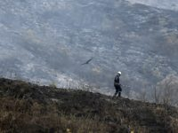 A firefighter walks in the middle of a forest burned by a fire on February 4, 2019 in a rural area near Cali, Colombia. - The fire that broke out on Saturday consumed about 140 hectares of forest. (Photo by Luis ROBAYO / AFP) (Photo credit should read LUIS ROBAYO/AFP/Getty …