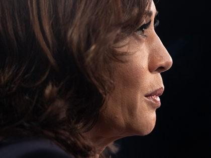 California Poll: Harris Drops Behind Yang, Sanders Ties Biden