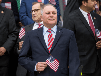 Scalise on GA Senate Runoffs: 'Those Two Seats Are Everything'