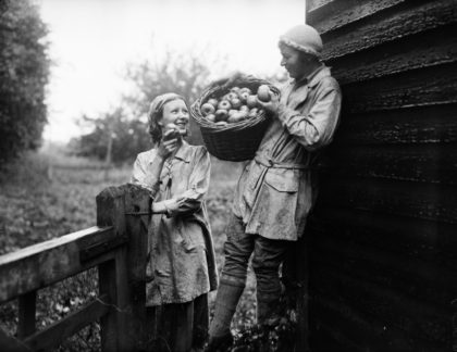 8th September 1932: Two apple pickers at Wine Mill, Lingfield, Sussex decide to try the goods. (Photo by Fox Photos/Getty Images)