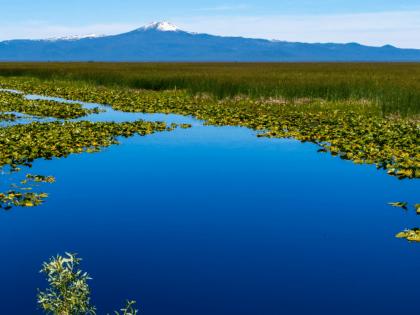 Klamath Wildlife National Refuge