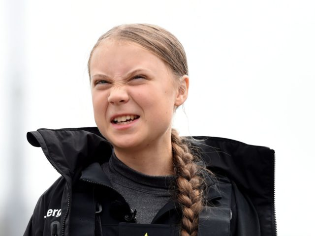 Greta Thunberg 'not surprised' by Donald Trump's sarcastic tweet