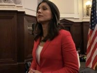 Gabbard to Trump: 'We Are Not Your Prostitutes. You Are Not Our Pimp'