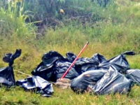 Jalisco Bags