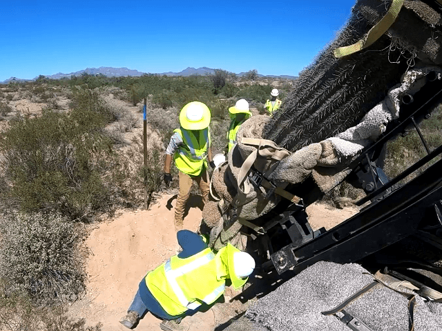 U.S. Army Corps of Engineers construction crews carefully move protected species in the Organ Pipe National Monument. (Image: U.S. Army Corps of Engineers video screenshot)