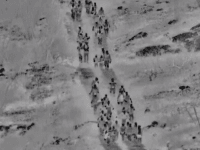 WATCH: Large Group of Migrant Families Cross Arizona Border