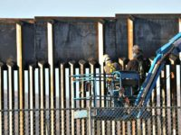 Pentagon: Border Wall Going Up About One Mile Per Day