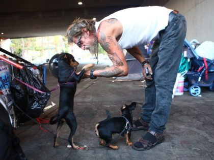 LOS ANGELES, CALIFORNIA - SEPTEMBER 09: Antonio DeSilva, who is currently homeless, plays with his dogs outside his tent on September 09, 2019 in Los Angeles, California. A new plan under consideration in the city would bar homeless people from sleeping on sidewalks and streets in more than 25 percent …
