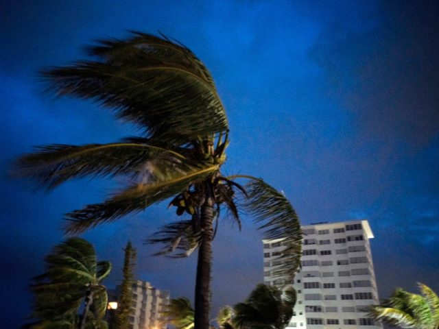 Strong winds move the palms of the palm trees at the first moment of the arrival of Hurricane Dorian in Freeport, Grand Bahama, Bahamas, Sunday Sept. 1, 2019. (AP Photo/Ramon Espinosa)
