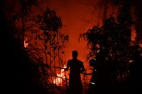 Frontline fight: Indonesia locked in epic battle against jungle blazes