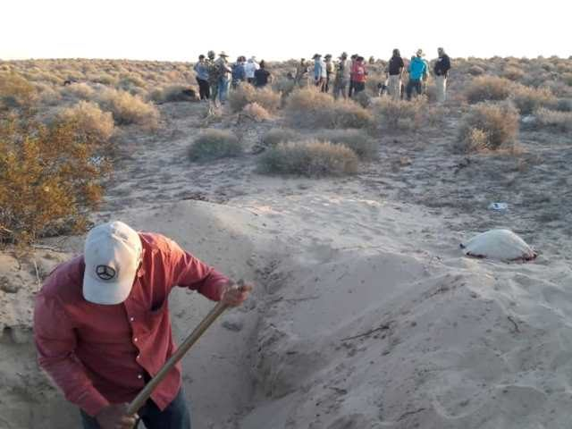 Volunteers from Madres Buscadoras de Sonora search a mass grave near the city of Puerto Peñasco.