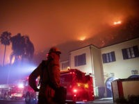 A firefighter watches a flames approach the Mandeville Canyon neighborhood during the Getty fire, Monday, Oct. 28, 2019, in Los Angeles, Calif. (AP Photo/ Christian Monterrosa)