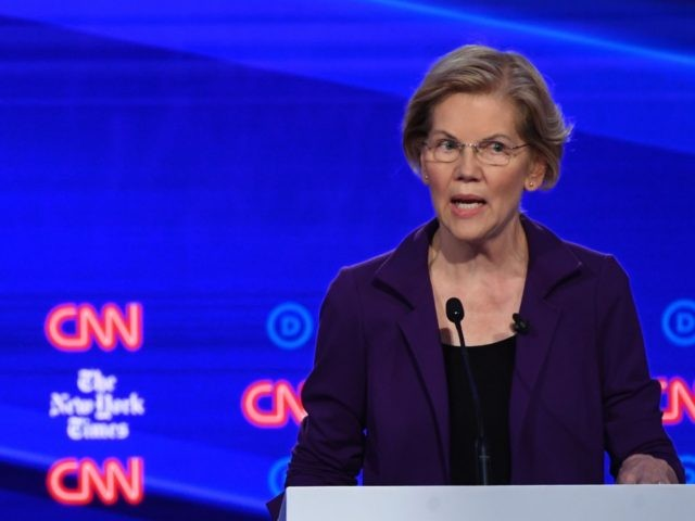 Elizabeth Warren (Saul Loeb / AFP / Getty)