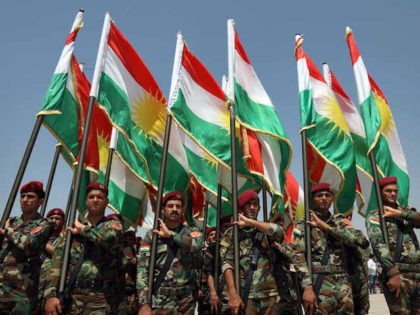 Members of the Iraqi Kurdish Peshmerga stand holding flags of Iraq's autonomous Kurdistan region a training session by German military officers during the German Defence Minister's visit at a facility on the outskirts of Arbil, the capital of the autonomous region, on August 21, 2019. (Photo by SAFIN HAMED / …
