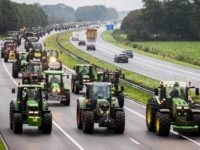 Farmers block the A28 Highway with their tractors between Hoogeveen and Meppel on October 1, 2019 during a national protest of farmers. - The farmers joined a national demonstration in The Hague to draw attention to their difficulties to comply with climate and environmental policy. (Photo by Vincent Jannink / …