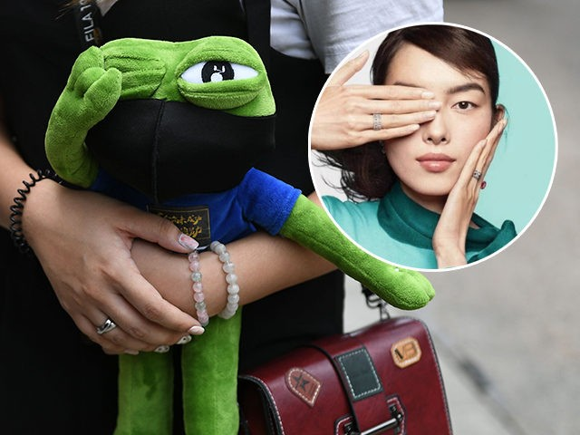 A demonstrator holds a Pepe the Frog stuffed toy as other protesters gather outside the High Court premises in support of activist Edward Leung, jailed for taking part in the 2016 Mongkok riots, during an appeal hearing for his period of sentence in Hong Kong on October 9, 2019. - …