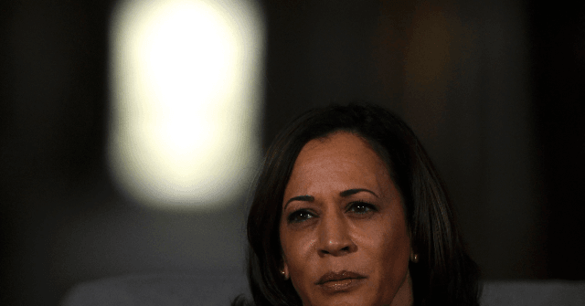 Nolte: 'Top-Tier Candidate' Kamala Harris Now Losing to Tulsi Gabbard