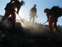 Firefighters from an inmate hand crew work to put out hot spots from the Tick Fire on October 25, 2019 in Canyon Country, California. The fire has blackened 4,300 acres thus far with around 40,000 people under mandatory evacuation orders. (Photo by Mario Tama/Getty Images)