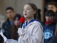 Swedish climate activist Greta Thunberg speaks to several thousand people at a climate strike rally Friday, Oct. 11, 2019, in Denver. The rally was staged in Denver's Civic Center Park. (AP Photo/David Zalubowski)