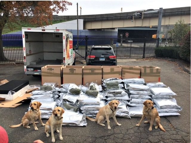 K9S Sniff Out Marajuana