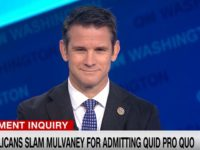 GOP Rep. Kinzinger: Trump Should 'Call up More of the National Guard'
