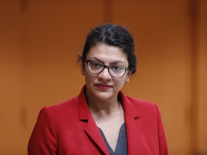 Rashida Tlaib: Policing Is Built on 'Structural Racism'