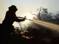 40% of L.A. Firefighters Decline to Show Up for Coronavirus Vaccine