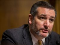 Watch: Ted Cruz Torches Democrats' Call to Ban Fracking
